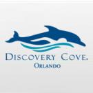 Discovery Cove Ultimate + NADO com Golfinho + SeaWorld Orlando + Aquatica Orlando + Busch Gardens Tampa